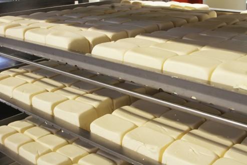 lacteos_mojica-quesos